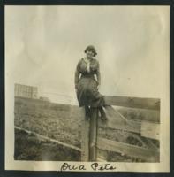 "1913 ""On a Peta"""